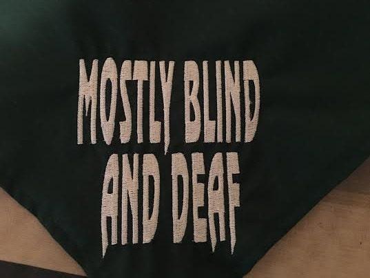 Mostly Blind And Deaf Dog Bandana