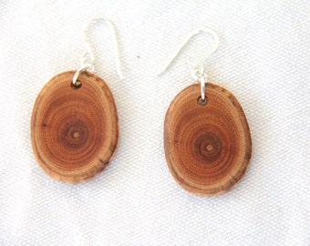 small dark buckthorn wood and sterling silver earrings