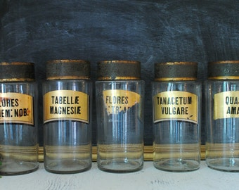 French apothecary bottles - set of 5