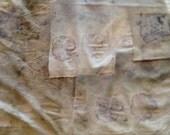Eco-Print Natural Plants Bundle Organic Cotton Jersey