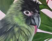 Bird portrait custom painting from photo on canvas hand painted parrot