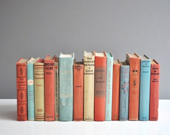 Large Collection of Vintage Red, Blue, and Beige Books