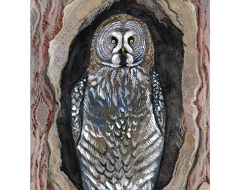 "Owl Art Print of Original Watercolor Painting - Great Grey Owl Wall Art - Owl Art -Woodland Wall Art Home Decor - 8 1/2""x11"""