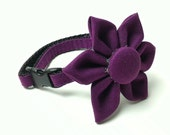 Cat Collar - Simply Plum - Matching Bow Tie and Flower Available