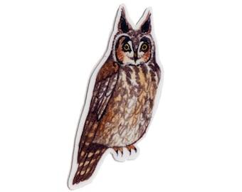 Long-eared Owl Bird Magnet / Nature Art / Refrigerator Magnet / Office Magnet / Party Favor / Small Gift