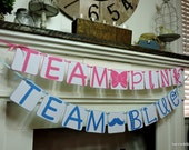 Pink Or Blue - Gender Reveal - Team Pink - Team Blue - Baby Banners - New Baby Announcement - Sonogram Photos - Photog Prop - Girl Or Boy