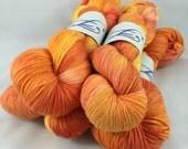 Mornin' Sunshine: Superwash Bountiful 2 Hand Painted worsted Yarn
