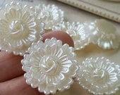 25 mm ( 2 holes) Beige Color Lotus Flower Pearlised Flat Back Pearl Cabochons (.tst).