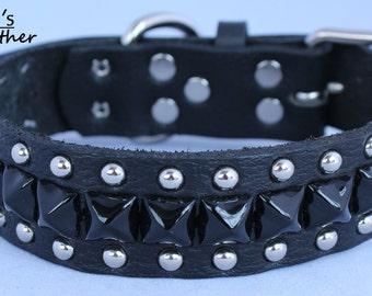 Small dog collar with black pyramids and circle studs