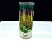 Redwoods California Glass Vintage Libbey Redwood Forest Glassware Woodland Ice Tea Frosted Drinking Glass Travel Souvenir Cocktail 50s 1960s