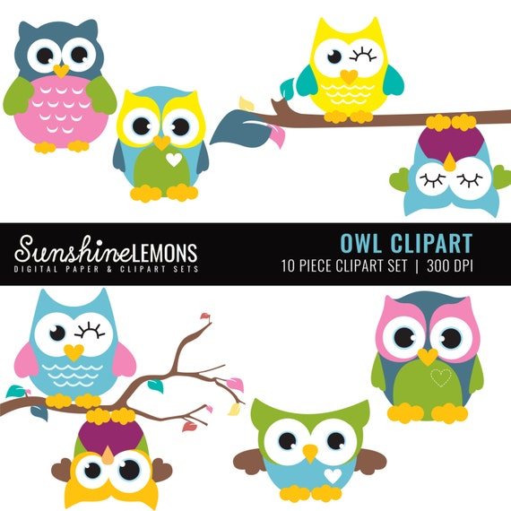 Cute Owl Clipart - 10 piece clipart set