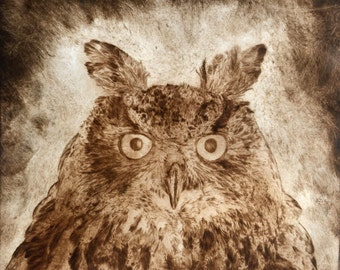Drypoint limited edition print 'Eurasian Eagle Owl'