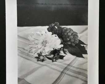 Original Vintage Photograph Carnation & Grapes