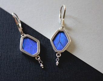 Real butterfly wing earrings - silver butterfly wing earrings - butterfly wings jewelry - Morpho - hexagon shape
