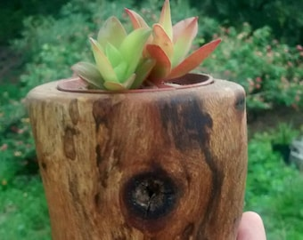 Succulent Wooden Planter Pot/ Rustic Planter / Reclaimed Wood planter/ Succulent Pot / Spalted Wood /Wiwiurka