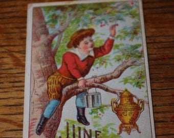 Late 1800s Full Color Advertising Card