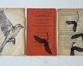 Sparrows and Falling Seeds on Vintage book paper