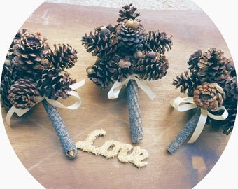 Rustic Wedding Bridesmaids Bouquet Pine Cone Winter Fall Country Alternative Wedding Flowers