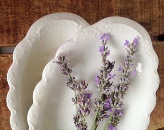 Vintage Ironstone Dishes, Set of 2 White Ironstone Dishes, Oval Side Dish, Johnson Brothers Dishes with Embossing, 1957 American Ironstone