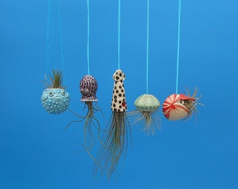 Miniature Hanging  Air Planter Collection, Puffer Fish, Nautilus, Jellyfish, Squid, Octopus,Whimsical Gift