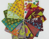 Field Day Fat Quarter Bundle - Alison Glass for Andover - 14 Fat Quarters - 3.5 Yards Total