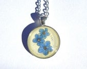 Real Pressed Forget-me-not Flower Round Pendant Necklace