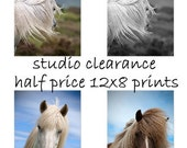 SALE - Horse home decor, equine art, horse photography, horse art, equine decor, 12x8 half price
