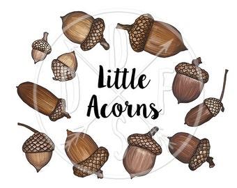 A0033 - Acorn, Brown Acorns, Oak Nature Kit - Digital Clip Art, Clipart, Instant Download, Downloadable Print, Printable Art. 11 PNG files.