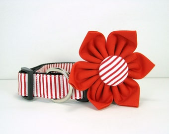 Christmas dog collar with flower set (Mini,X-Small,Small,Medium ,Large or X-Large Size)- Adjustable