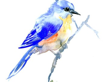 Bluebird original watercolor painting 10 x 8 in bluebird art bird lvoer art