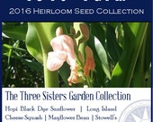 The Three Sisters Garden Collection - Heirloom, non-GMO Seed Collection