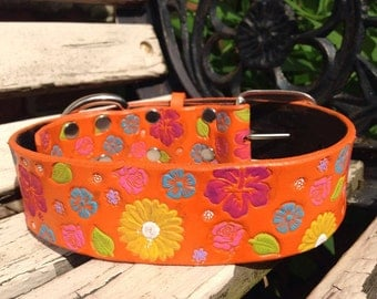 Leather orange dog collar