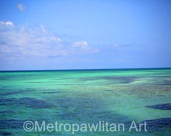 8x10 photograph Florida Keys Ocean