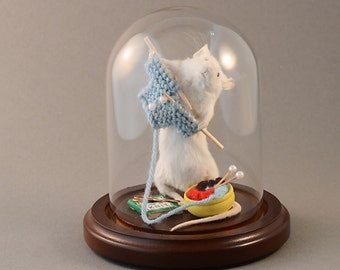 Taxidermy Knitting Mouse Anthropomorphic Taxidermy