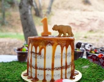 Beeswax Birthday Number - Single Digit