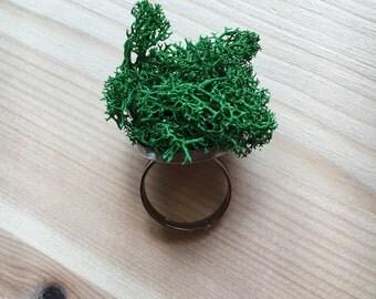 A little Moss Ring