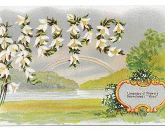 Hope - Language of Flowers Postcard, 1908
