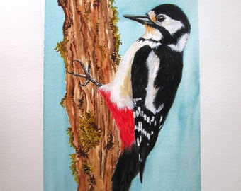 Original  watercolour painting of a Great Spotted Woodpecker by Josephine Bell