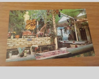 Vintage Original The Grape Bar The Kapok Tree Inn Clearwater Florida Postcard Free Shipping
