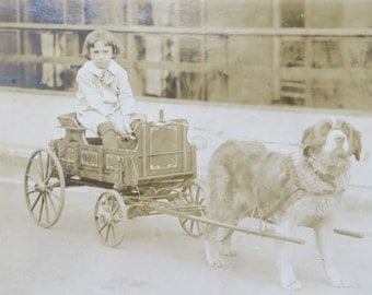 Vintage 1910's Little Boy With His Dog Cart Real Photo Postcard - Free Shipping