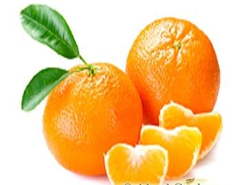 Mandarin - Fragrance Oil - 100% Fragrance Oil Oils - Mandarin Red with orange citrus and oriental flair