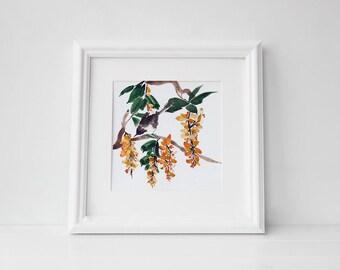 Acacia and bird watercolor art print