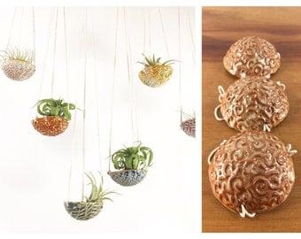 "air plant hanging planter / air plant holder / textured 3"" wide / orange peach shino"