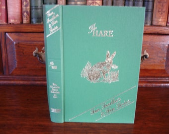 THE HARE - Fur, Feather & Fin