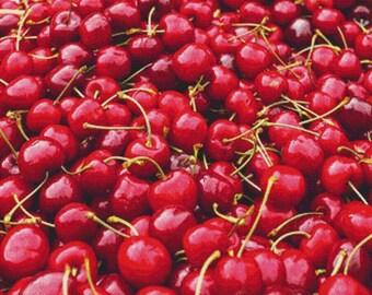 Cherries PDF Cross Stitch Pattern