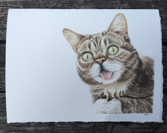 Lil Bub Greeting Card, printed on fine art paper :)