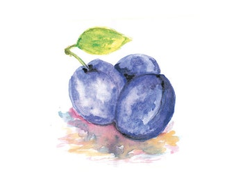 Plums Watercolor Print, Kitchen Wall Decor, Fruit Watercolor Painting, Plums Wall Art, Plums Art, Plums Decor, Kitchen Wall Art