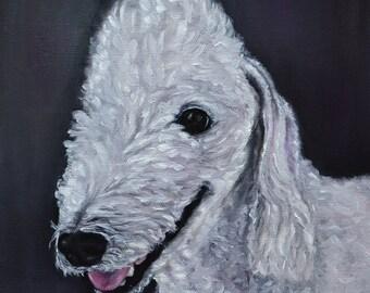 bedlington terrier, custom pet portrait, dog painting, custom painting, pet memorial art, Pet Portrait commission From Photo,   8x8