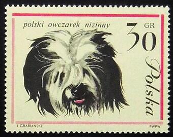 Polish Lowland Sheepdog polski owczarek nizinny -Handmade Framed Postage Stamp Art 0928AM