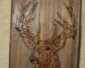 Pyrography, Mule Deer, Wild Life, Nature, Antlers, Wood Burning, Dark Wood, Wall Hanging, Home Decor, Fathers Day